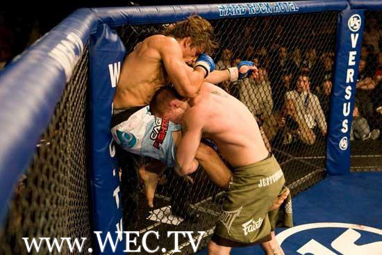 Urijah Faber Flying Knee